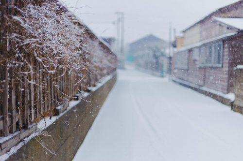 川上 直 作「winter-4」プリント単体