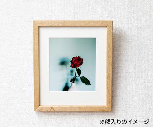 土田 貴文 作「Flower-14」額装(プリント付)